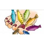 GARRASPA fish pedicure salon