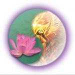 Transformational Healing - Neuromuscular, Sports Massage